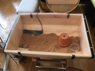 樽を半分にした器の中にハリネズミのお家があります